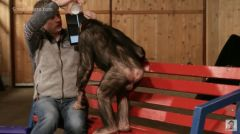 tour-magie-ipad-chimpanze.jpg